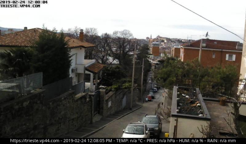Trieste vp44